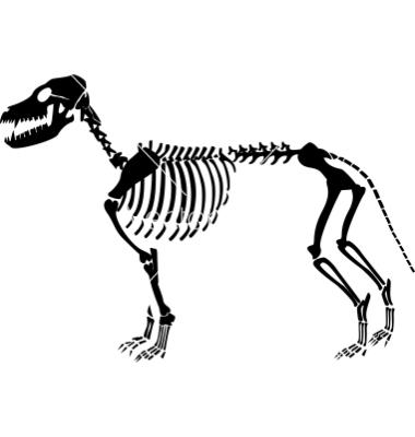 Skeleton dog clipart.