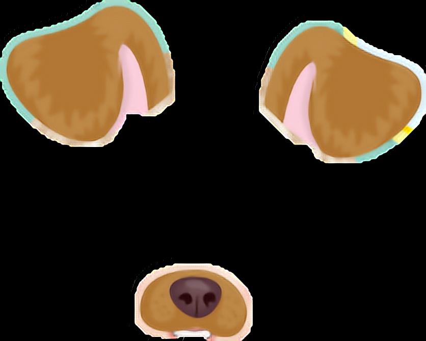 Dog paddle Animal Doge Snapchat.