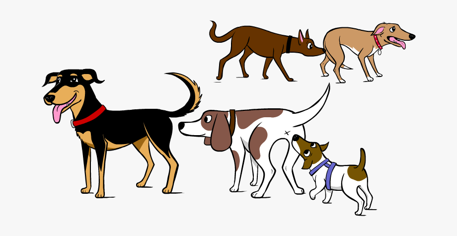 Why Do Dogs Sniff Each Others Bums.