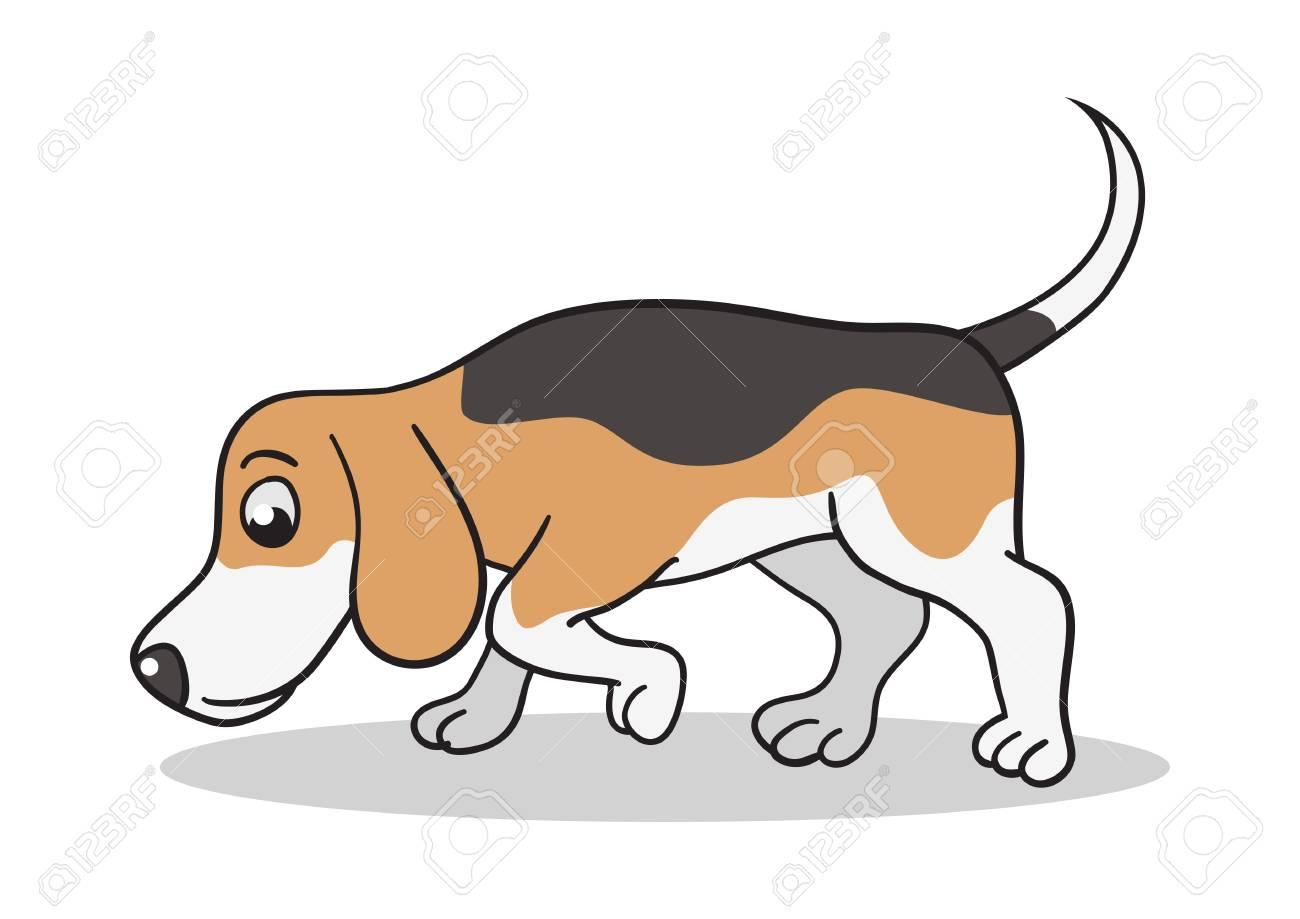 Vector cartoon illustration of a beagle dog sniffing.