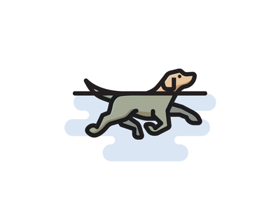Swimming Dog.
