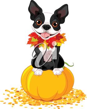 Clipart dog thanksgiving, Clipart dog thanksgiving.