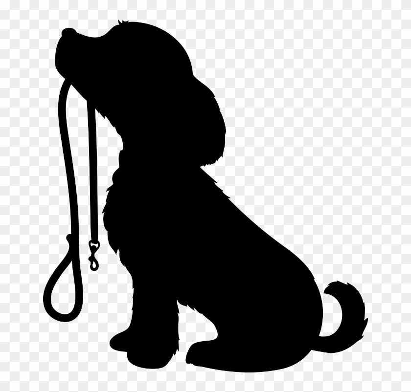 Dog Training In And Around Bolton Just Another Wordpress.