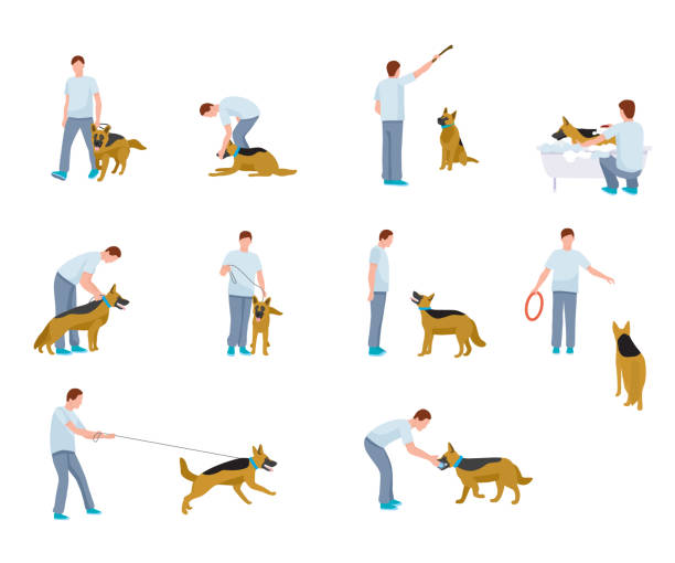 Best Dog Obedience Illustrations, Royalty.