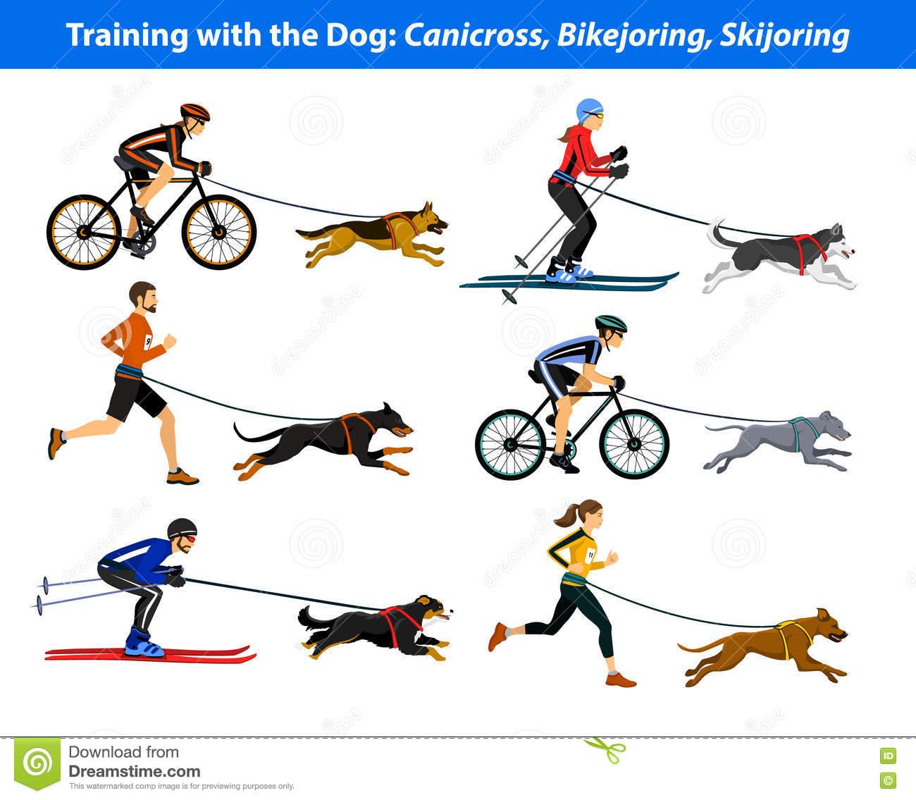 Training Exercising With Dog: Canicross, Bikejoring, Skijoring.