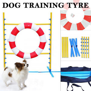 Dog Training Outdoor Sports Agility Tyre Hoop Jump Exercise.