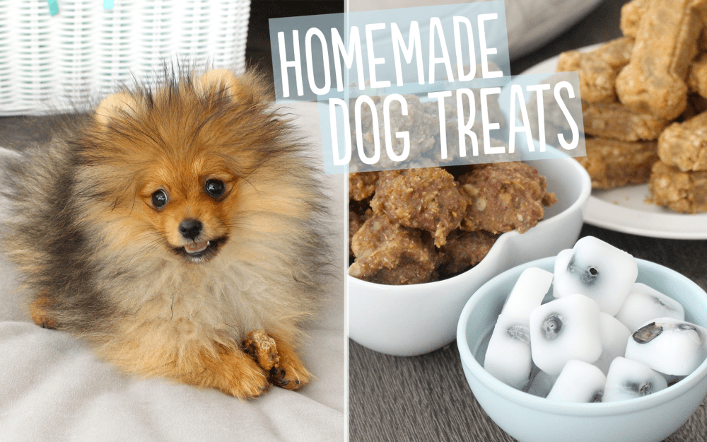 3 Homemade Dog Treat Recipes.