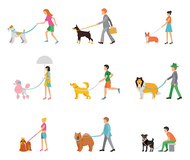 Best Dog Walking Illustrations, Royalty.