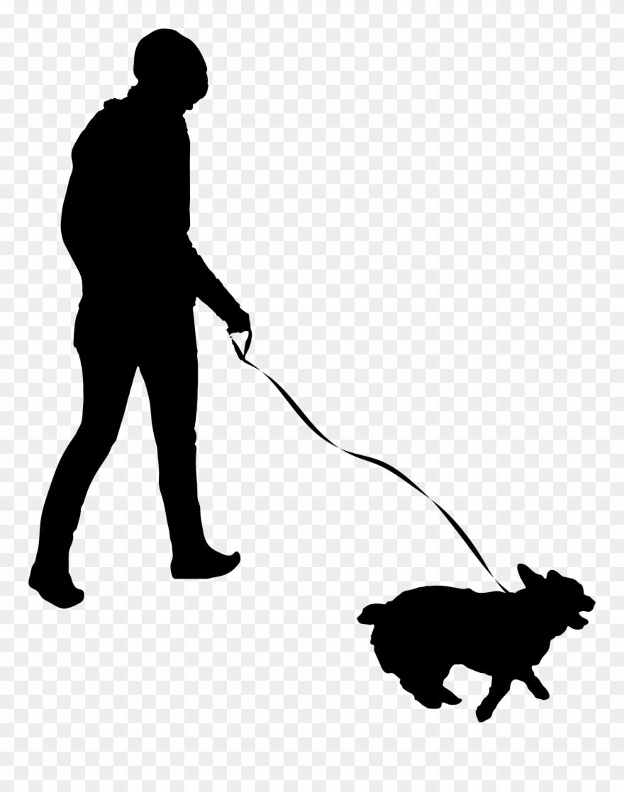 Pet Sitting Dog Walking Cat.