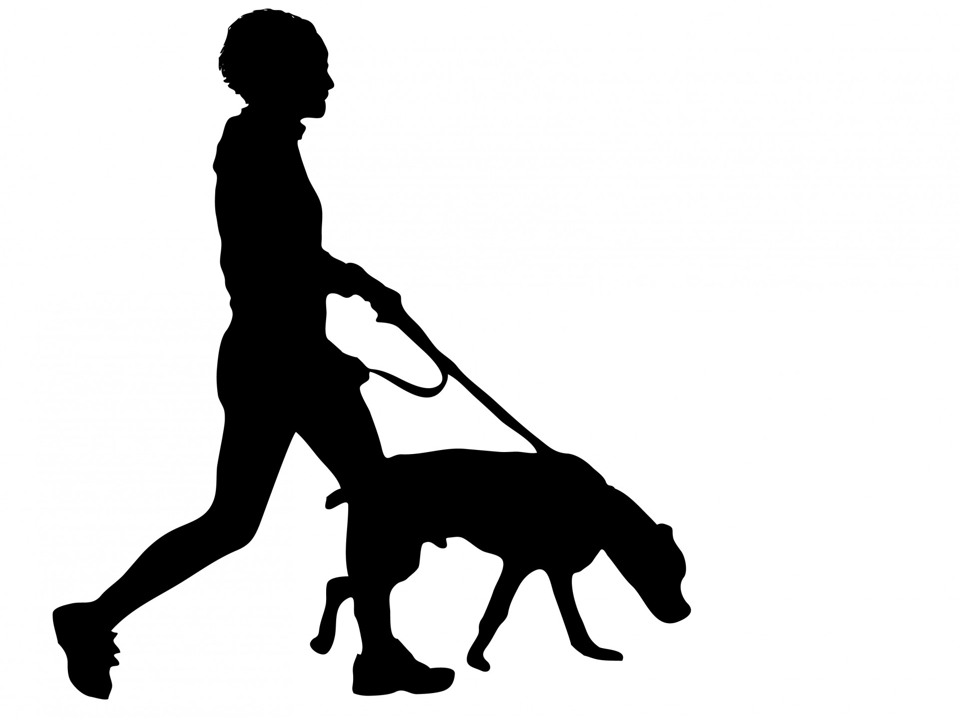 Silhouette Dog Walking.