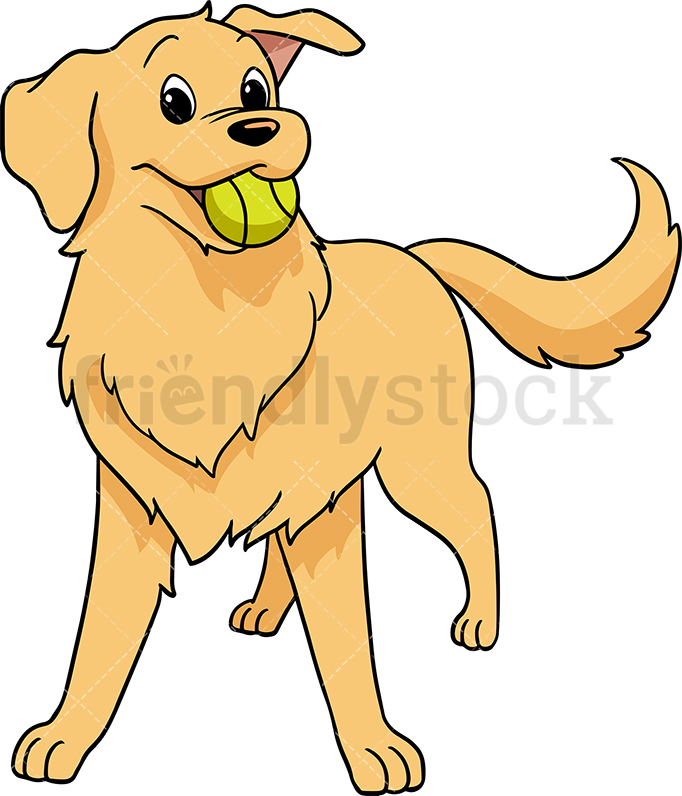 Joyful Golden Retriever In A Playful Mood With Tennis Ball In Its Mouth.