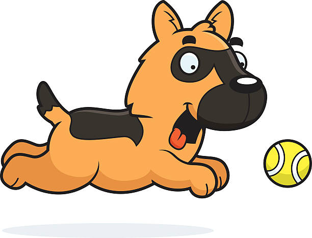 Best Dog Catching Ball Illustrations, Royalty.