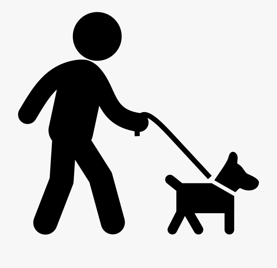 Dog With Belt Walking With A Man Comments.
