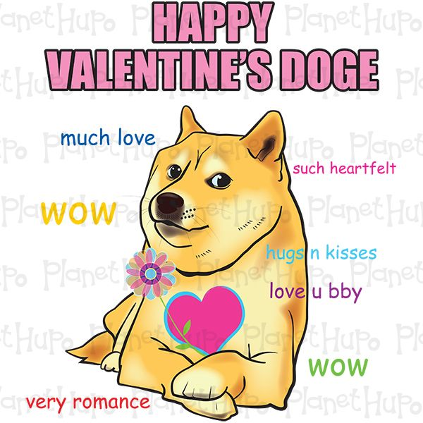 such wow doge
