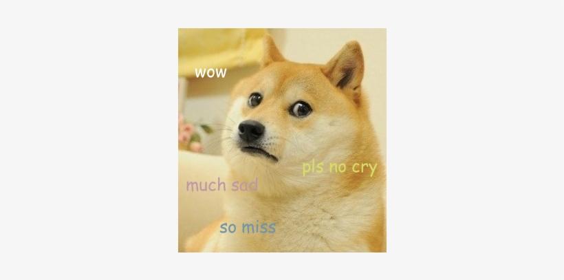 Doge Head PNG & Download Transparent Doge Head PNG Images for Free.