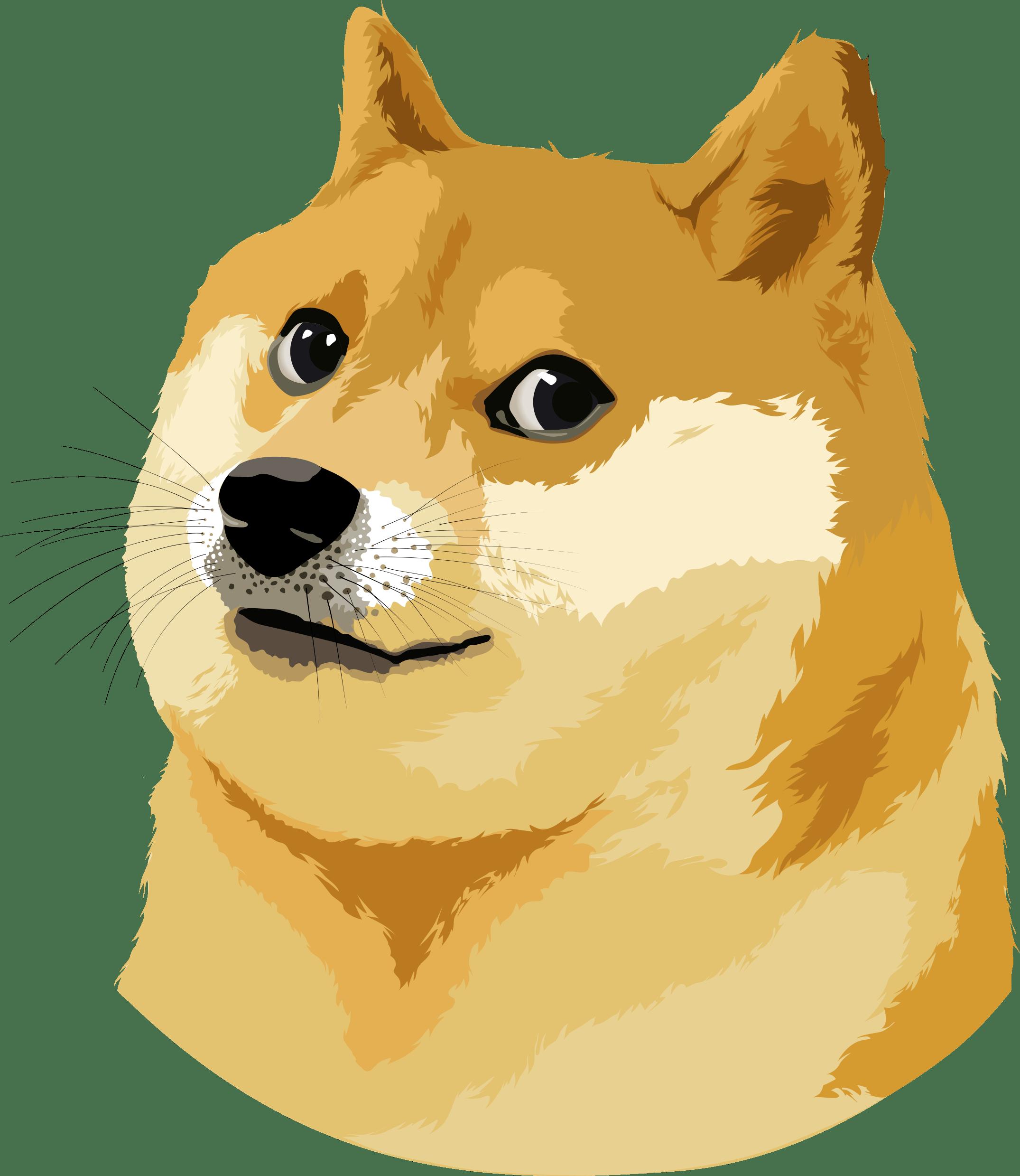 Doge Vector Illustration transparent PNG.