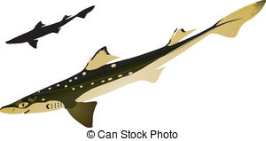 Dogfish Clipart and Stock Illustrations. 24 Dogfish vector EPS.