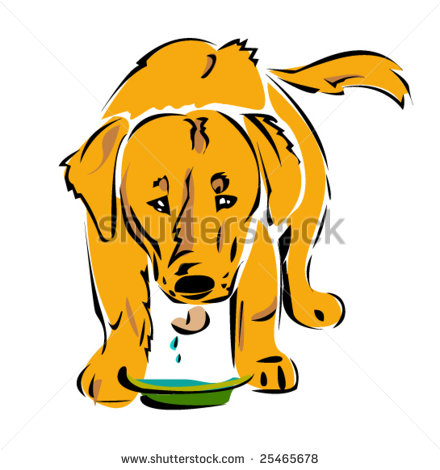 Showing post & media for Cartoon dogs drinking water.