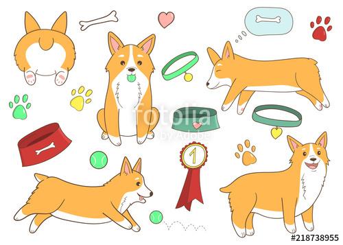 Cute cartoon dogs clipart. Welsh Corgi. Hand drawn. Funny puppy life.