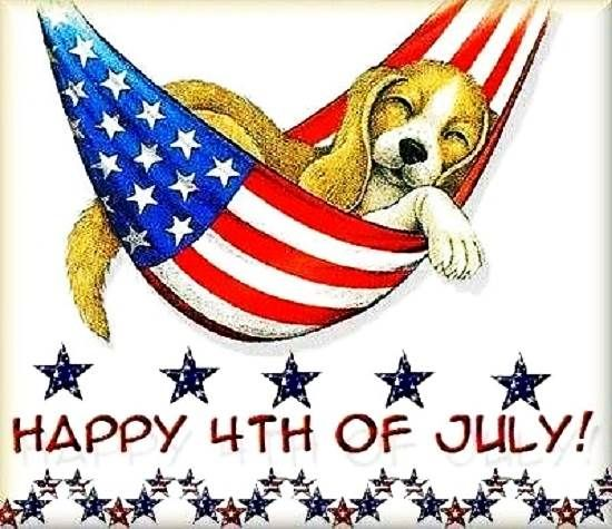 Happy Independence Day! It's a dogs life Happy 4th of July Clip.