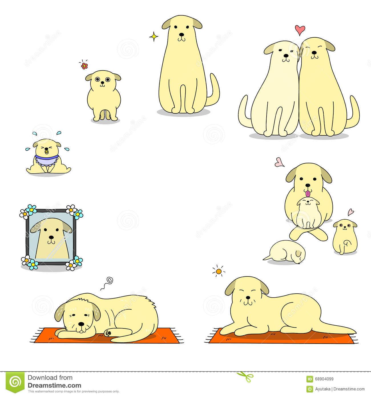 Dog's Life Cycle Stock Vector.
