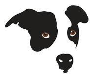 Dog Nose Closeup Stock Illustrations.