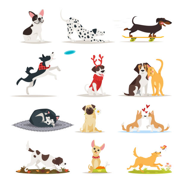 Best Dogs Playing Illustrations, Royalty.