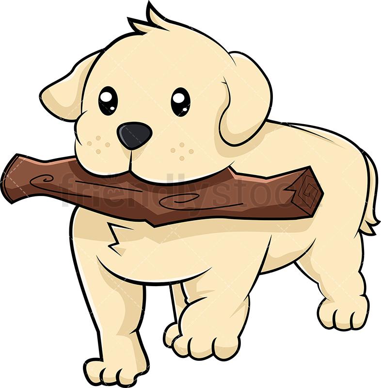 Labrador Puppy Playing Fetch.