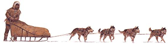 Dog Sledding Cartoon.
