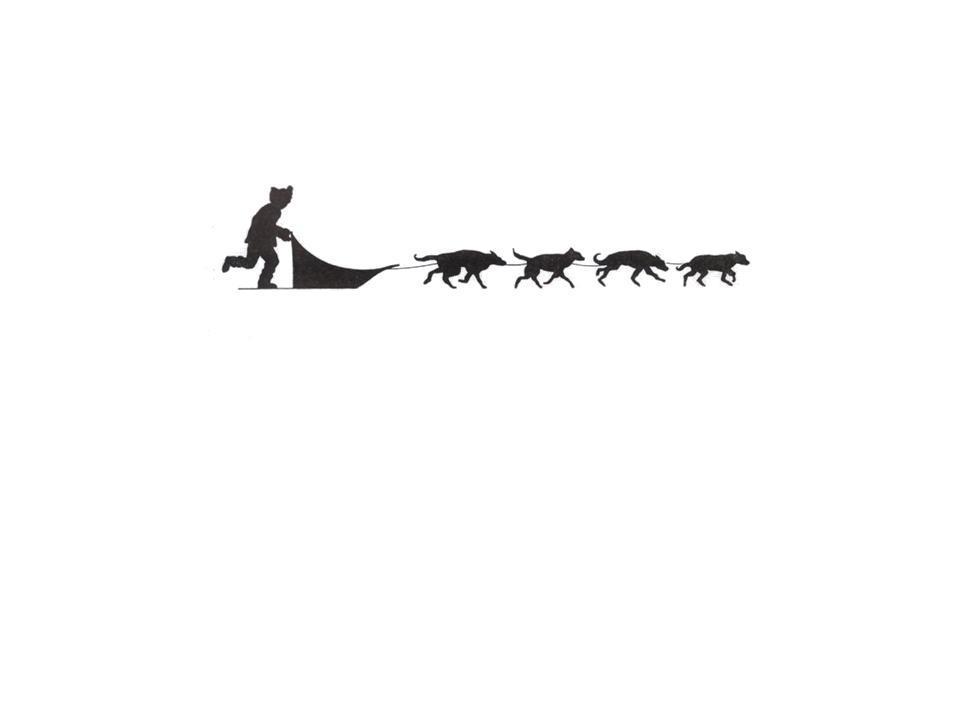 Iditarod dogs clip art.