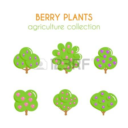136 Dogwood Stock Vector Illustration And Royalty Free Dogwood Clipart.