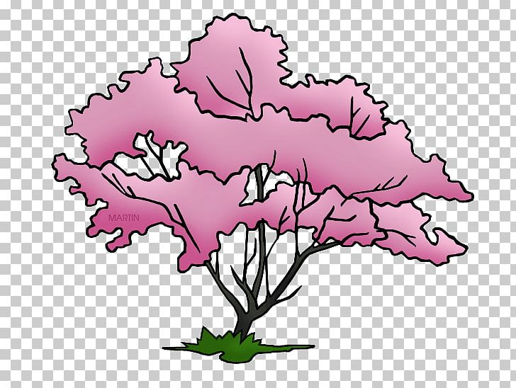 Flowering Dogwood Virginia State Tree PNG, Clipart, Art.