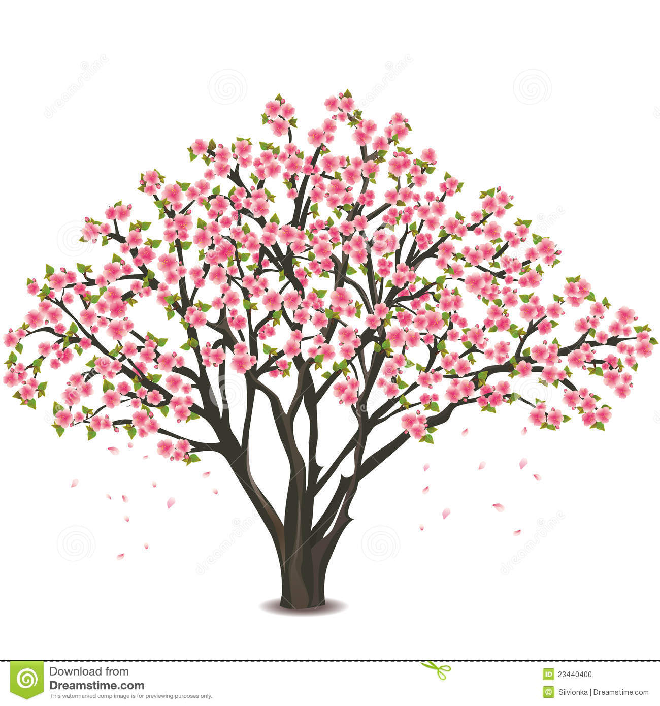 Dogwood tree clipart 3 » Clipart Station.