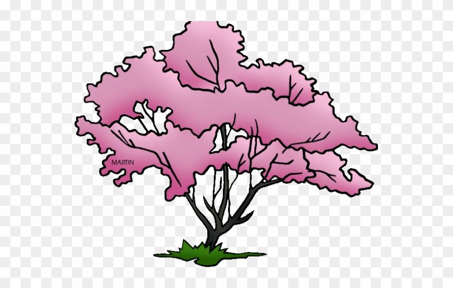 Pretty Clipart Dogwood Tree.