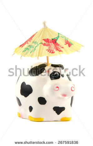 Cash cow free stock photos download (463 Free stock photos) for.