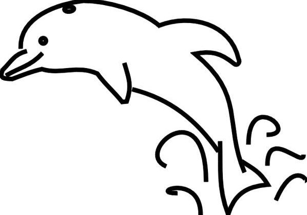 Dolphin Clipart Black And White Free Awesome Magnificent 4.