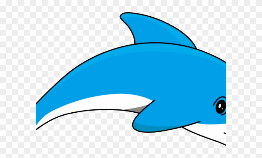 Dolphin Clipart Cartoon.