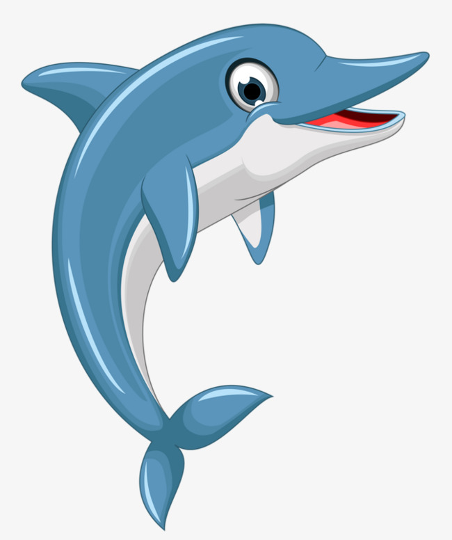 Cartoon Dolphin Png, Vector, PSD, and Clipart With Transparent.