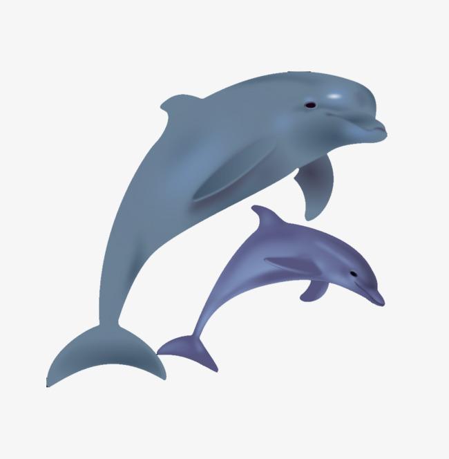 Cartoon Dolphins Jump, Cartoon Clipart, #79983.