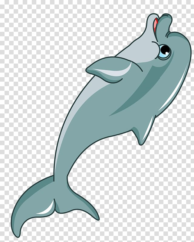 Dolphin Cartoon , dolphin transparent background PNG clipart.