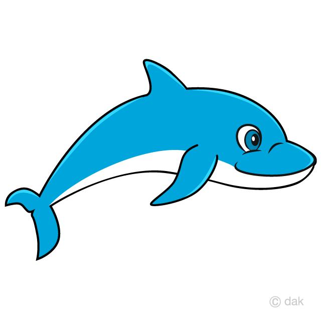 Swimming Dolphin Cartoon Free Picture|Illustoon.
