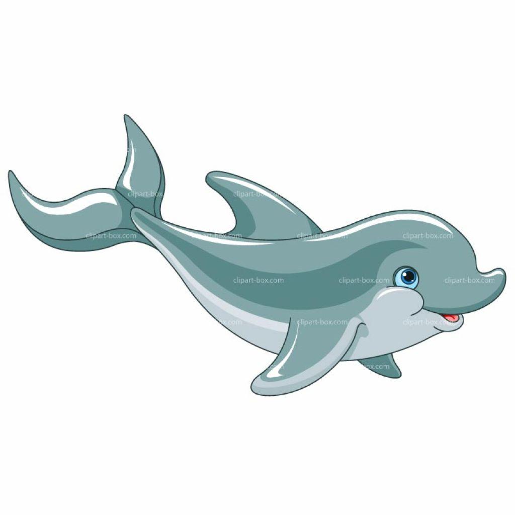 Cute Dolphin Clipart Clipart Kid.