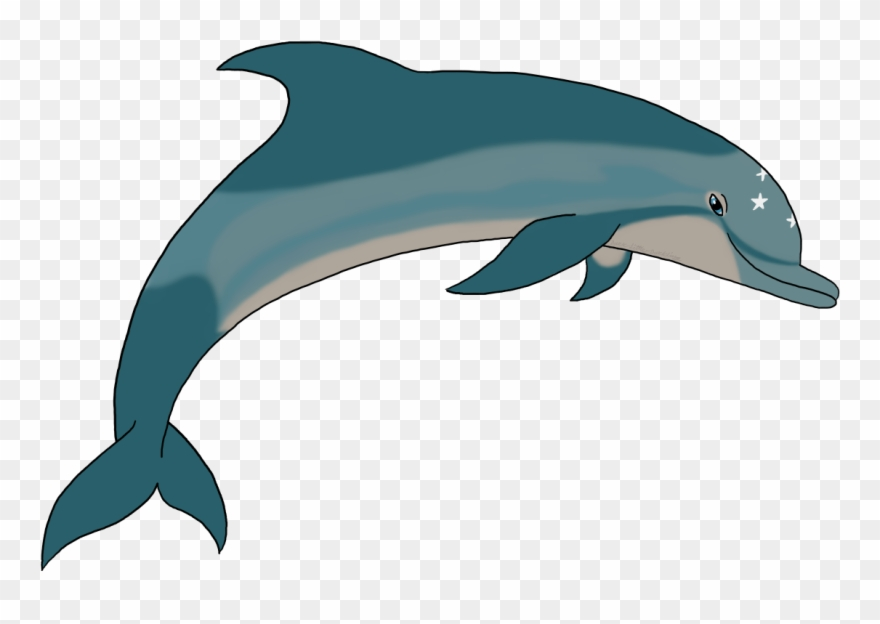 Ecco The Dolphin Png.