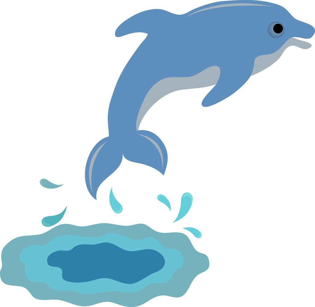 Jumping Dolphin School Clipart.