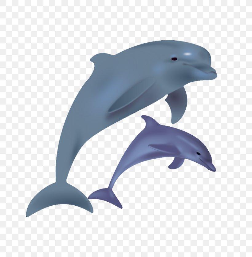 Bottlenose Dolphin Clip Art, PNG, 1024x1045px, Dolphin, Beak.