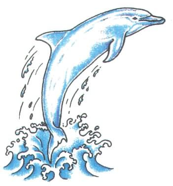 Dolphin Jumping Out Of Water Tattoo.
