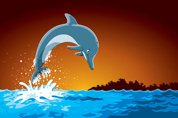 Best Dolphins Jumping Out Of Water Illustrations, Royalty.