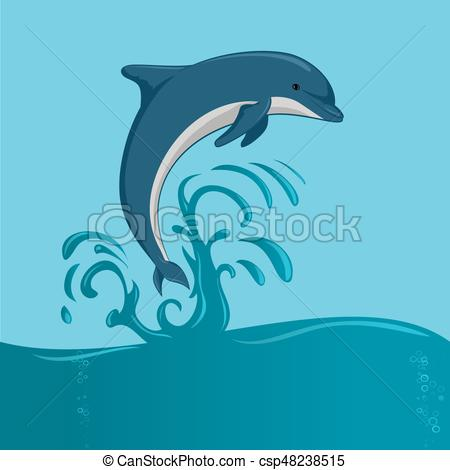 The dolphin jumping.