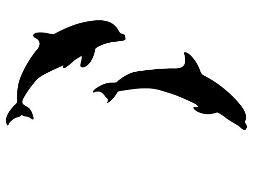 Dolphin Outline.