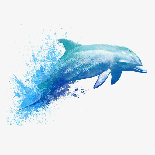 Watercolor Dolphin, Watercolor Clipart, Dolphin Clipart, Hand.